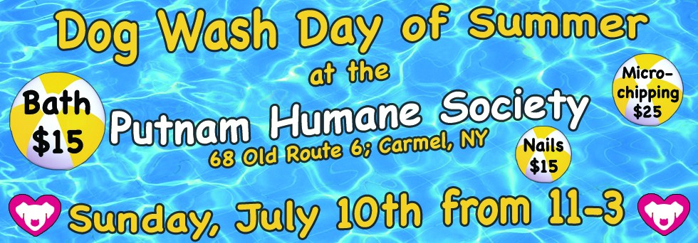 Dog Wash Day of Summer at the Putnam Humane Society